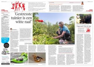 artikelLeidschDagblad